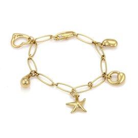 Tiffany & Co. Elsa Peretti 18K Yellow Gold 5 Charms Oval Chain Link Bracelet