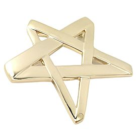 Tiffany & Co 18k Gold Star Picasso Large Brooch Pendant 1984