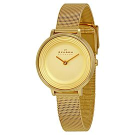 Skagen SKW2212 Champagne Dial Gold Tone Stainless Womens Watch
