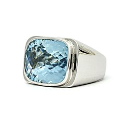 Aquamarine Statement Ring in 18k White Gold ( 30.00 cttw )