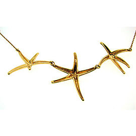 Tiffany & Co. Peretti Star 18K Yellow Gold Necklace
