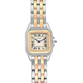 Cartier Panthere Steel Yellow Gold 2 Row Quartz Ladies Watch W25029B6