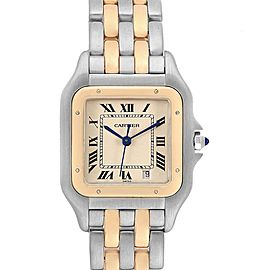 Cartier Panthere Large Steel Yellow Gold Two Row Mens Watch W25028B8