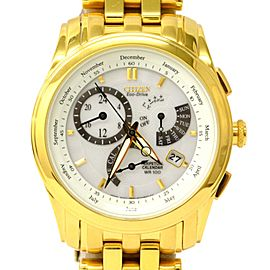 Citizen Dial Time Eco Drive BL8006-58A Mens Watch