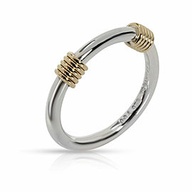Tiffany & Co. Vintage Double Coil Band in 18K Yellow Gold/Sterling Silver