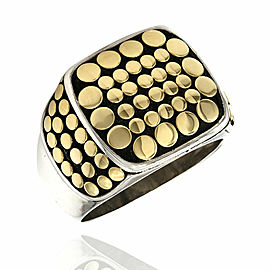 Hardy Dot Ring in Silver and gold