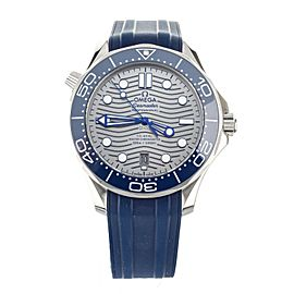 OMEGA SEAMASTER PROFESSIONAL 300M GRAY DIAL BLUE RUBBER 42MM 210.32.42.20.06.001