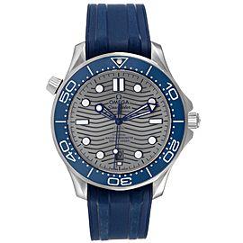 Omega Seamaster Diver Master Chronometer Mens Watch 210.32.42.20.06.001