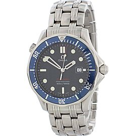 Omega Seamaster Professional 2221.80.00 Mens Watch