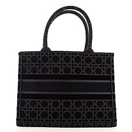 Christian Dior Book Tote Cannage Embroidered Velvet Small