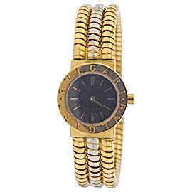 Bulgari Tubogas Watch Bracelet BB 23 2T