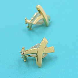 Tiffany X earrings