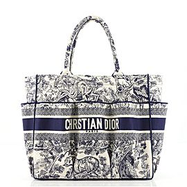 Christian Dior Catherine Tote Embroidered Canvas
