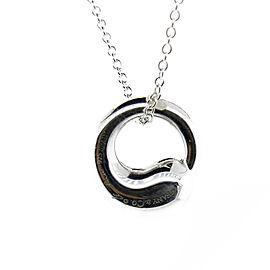 Tiffany & Co. Internal Pendant Necklace