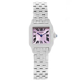 Cartier Santos W2510002 Demoiselle Stainless Steel Purple Dial 20mm Womens Watch