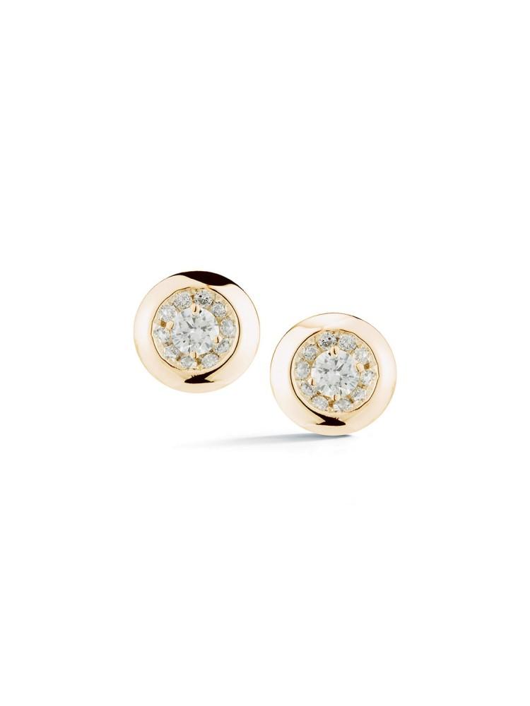 Lauren Joy 14k Yellow Gold Earrings