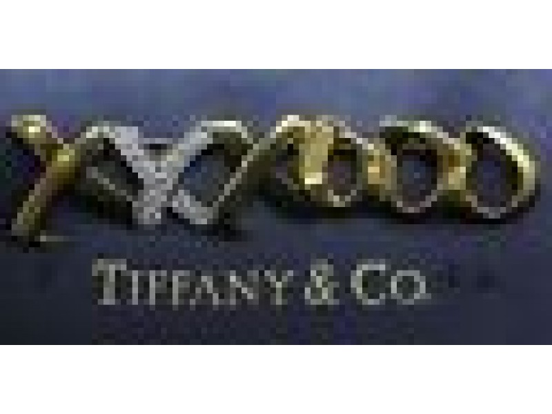 Tiffany & Co Paloma Picasso 18Kt / Platinum Diamond Pin / Brooch