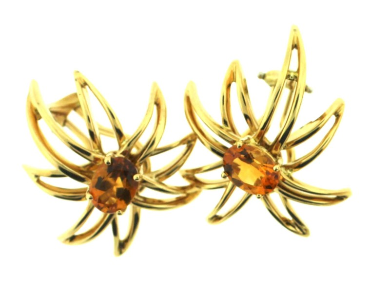 Tiffany & Co.  Citrine Fireworks Earring - Pin Set