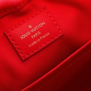 Louis Vuitton Monogram Canvas & Freesia Saintonge Bag