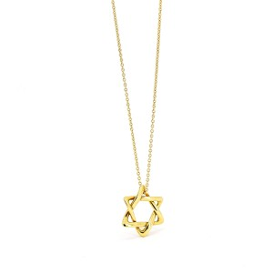 Tiffany & Co. Elsa Peretti Star of David Necklace in 18k Yellow Gold