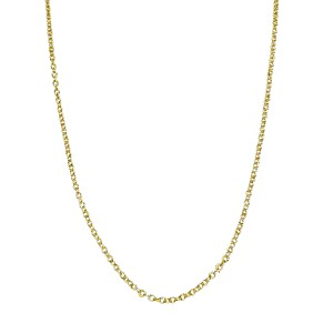 Tiffany & Co. Paloma Picasso 18K Yellow Gold Chain Necklace