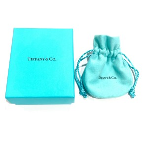 Tiffany & Co. Elsa Peretti Diamond Teardrop Pendant in Platinum 0.75