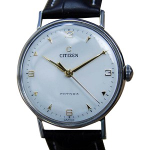 Citizen Phynox Stainless Steel & Leather 33mm Watch