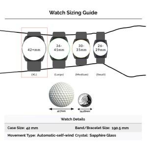 Omega Seamaster 2502.52 Steel 42mm  Watch (Certified Authentic & Warranty)