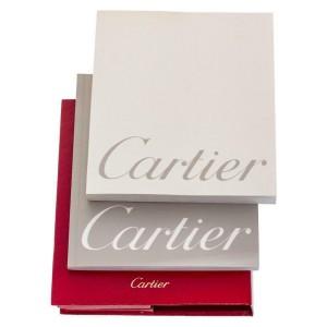 Cartier Santos W20018D6 Steel 29.0mm  Watch