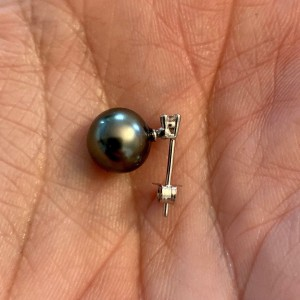 14k White Gold Tahitian Cultured Black Pearl Earrings