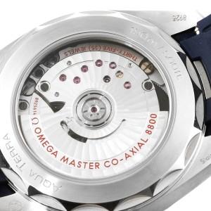 Omega Seamaster Aqua Terra Blue Dial Mens Watch 220.12.38.20.03.001 Card