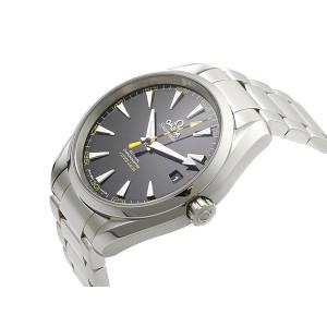 Omega Seamaster Aqua Terra 231.10.42.21.01.002 3486870 150M Co-Axial 41.5mm Mens Watch