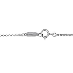 Tiffany   Platinum  Necklace