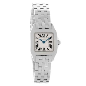 reputable site 40f58 4494e Cartier Santos Demoiselle W25064Z5 Stainless Steel & Silver Dial 22mm  Womens Watch