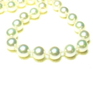 Cultured Akoya Pearl Stand With 14K Yellow Gold Clasp Necklace