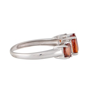 10K White Gold with Garnet & 0.02ctw Diamonds Ring Size 7