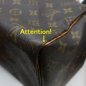 Louis Vuitton Monogram Speedy 25 Boston Bag PM  862532
