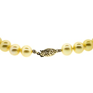 14k Yellow Gold and Yellow Pearl Strand Necklace
