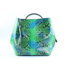 Dior Green Python Diorific Hobo 2way Bag 3DR01