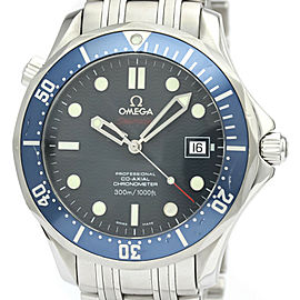 OMEGA stainless Steel Seamaster Professional Watch HK-2039