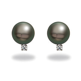 14k White Gold Diamonds Tahitian Black Cultured Pearl Earrings